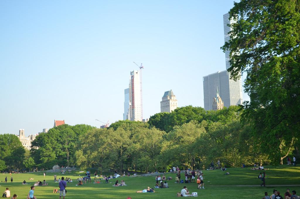 How To Have A Picnic In Central Park In New York City Blog Da Laura Peruchi Tudo Sobre Nova York