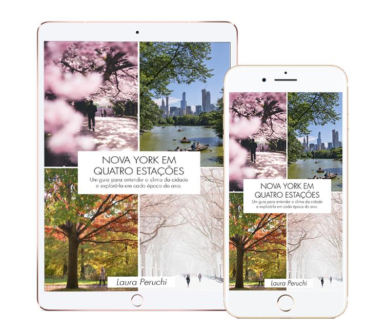 E-book Nova York em Quatro Estações